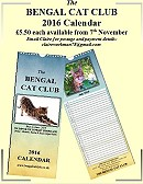 The Bengal Cat Club Shop: Home of the Bengals in the UK and Worldwide:http://www.bengalcatclub.co.uk/